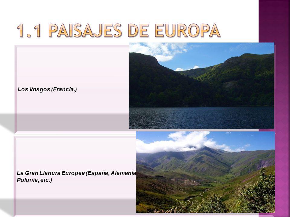 Los Vosgos (Francia.) La Gran Llanura Europea (España, Alemania Polonia, etc.)