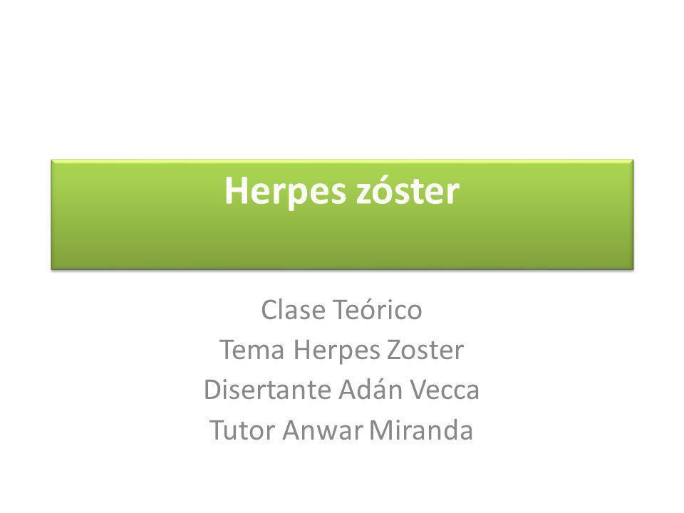 DEFINICION El herpes zóster es una infección aguda causada por el virus varicela-zoster (VVZ), que afecta sobre todo a adultos.