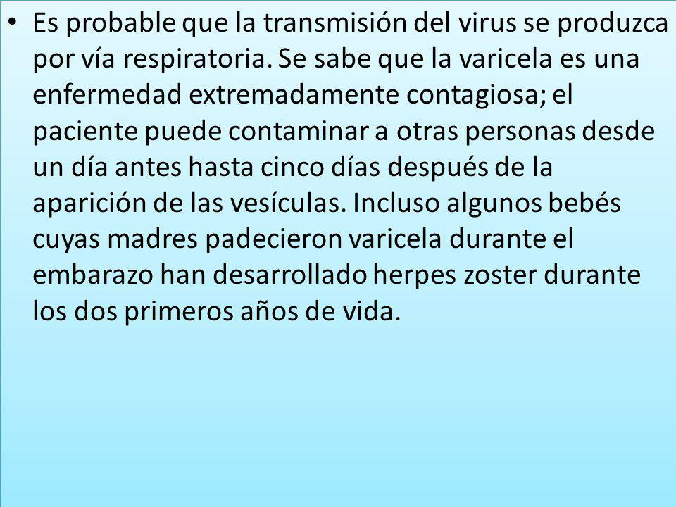 Es probable que la transmisión del virus se produzca por vía respiratoria. Se sabe que la varicela es una enfermedad extremadamente contagiosa; el pac
