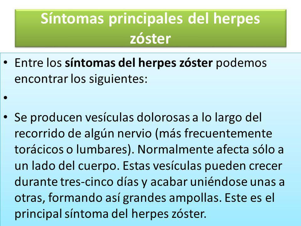 Síntomas principales del herpes zóster Entre los síntomas del herpes zóster podemos encontrar los siguientes: Se producen vesículas dolorosas a lo lar
