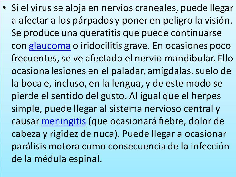 Si el virus se aloja en nervios craneales, puede llegar a afectar a los párpados y poner en peligro la visión. Se produce una queratitis que puede con