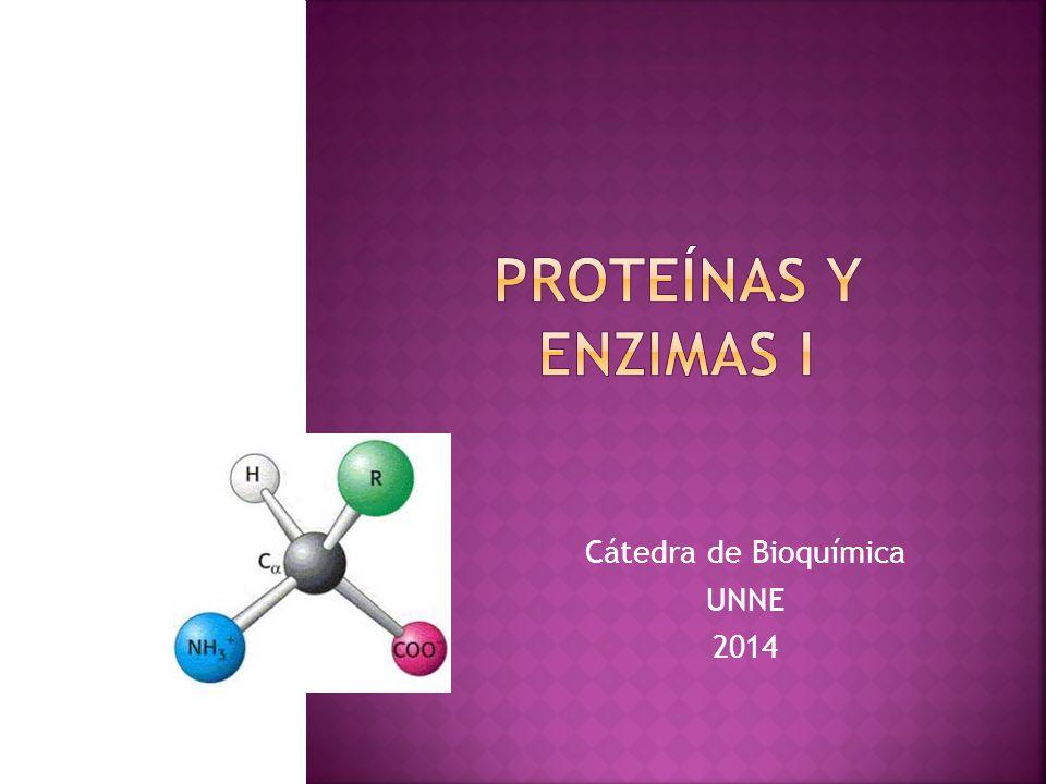 Cátedra de Bioquímica UNNE 2014