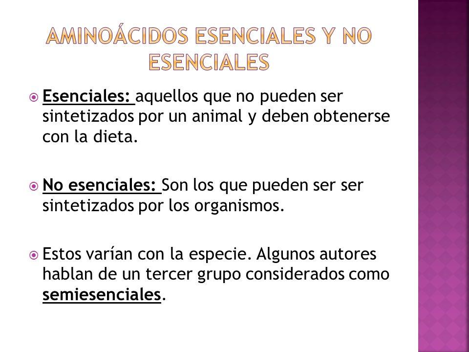 Esenciales: aquellos que no pueden ser sintetizados por un animal y deben obtenerse con la dieta. No esenciales: Son los que pueden ser ser sintetizad