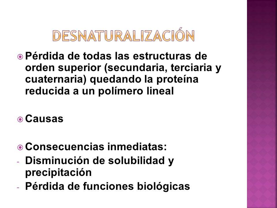 Pérdida de todas las estructuras de orden superior (secundaria, terciaria y cuaternaria) quedando la proteína reducida a un polímero lineal Causas Con