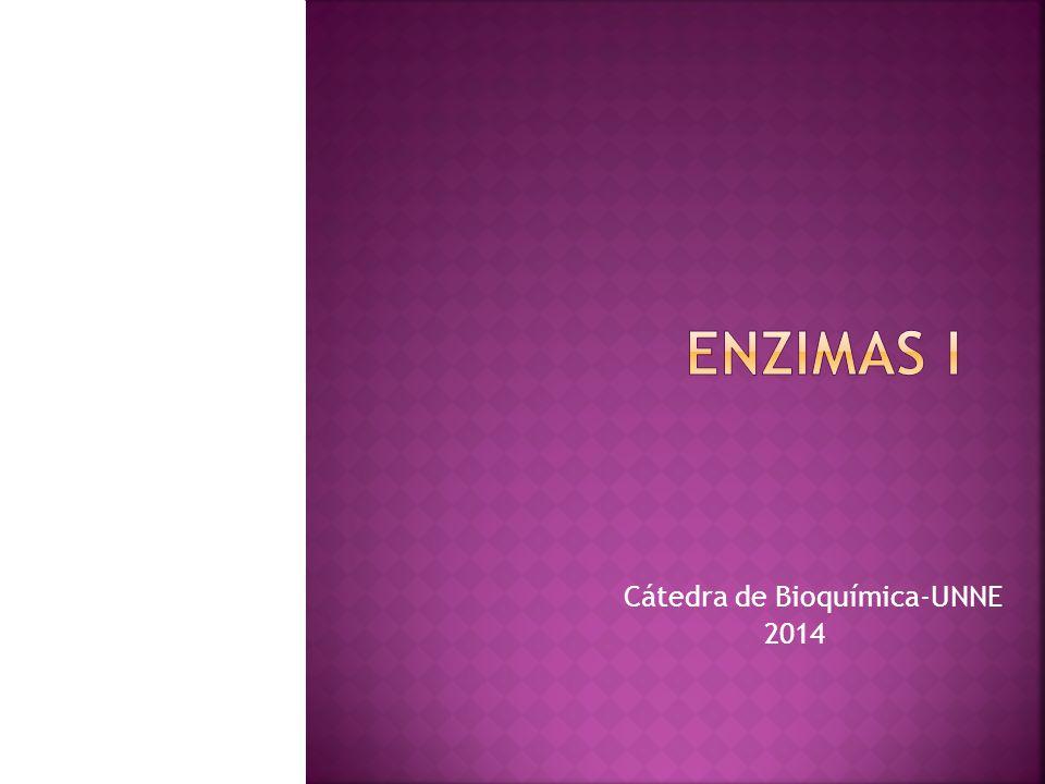 Cátedra de Bioquímica-UNNE 2014