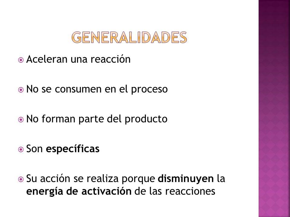Aceleran una reacción No se consumen en el proceso No forman parte del producto Son específicas Su acción se realiza porque disminuyen la energía de activación de las reacciones