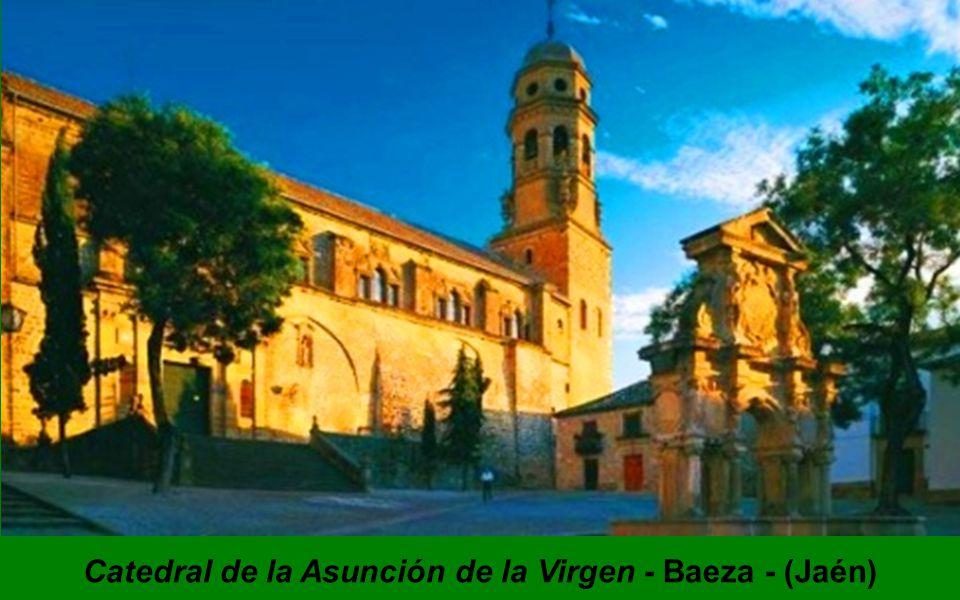 Catedral de San Salvador Oviedo