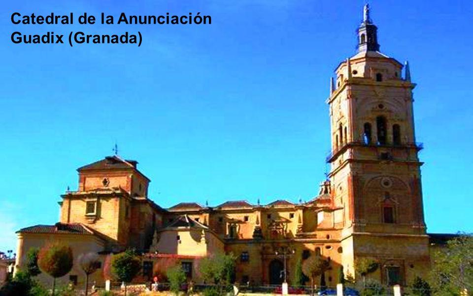 Catedral de la Asunción de Nuestra Señora - Córdoba
