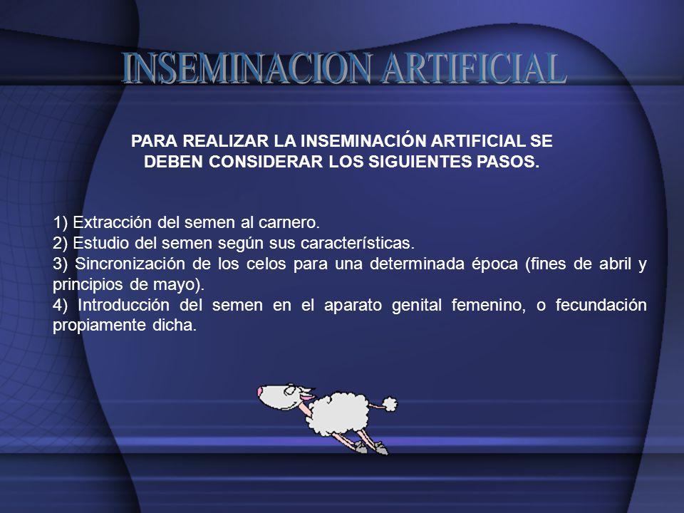 PARA REALIZAR LA INSEMINACIÓN ARTIFICIAL SE DEBEN CONSIDERAR LOS SIGUIENTES PASOS.
