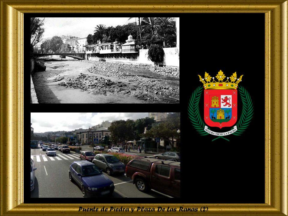 Puente de Piedra y Plaza De Las Ranas