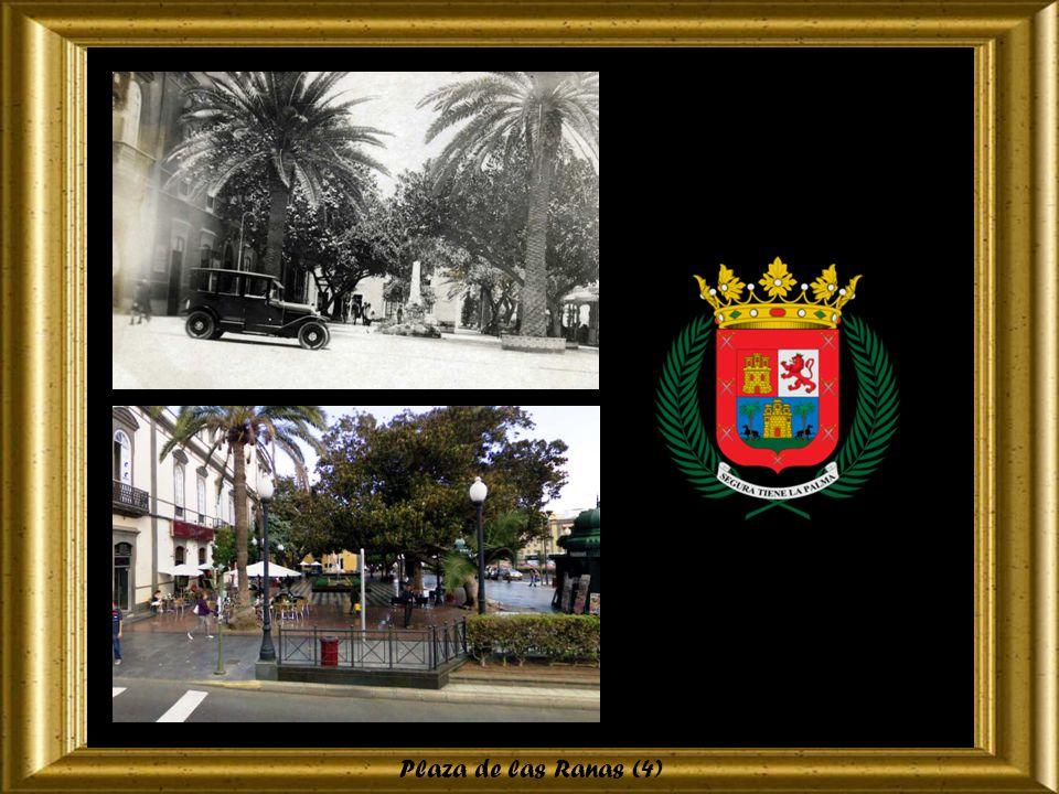 Plaza de las Ranas (3)