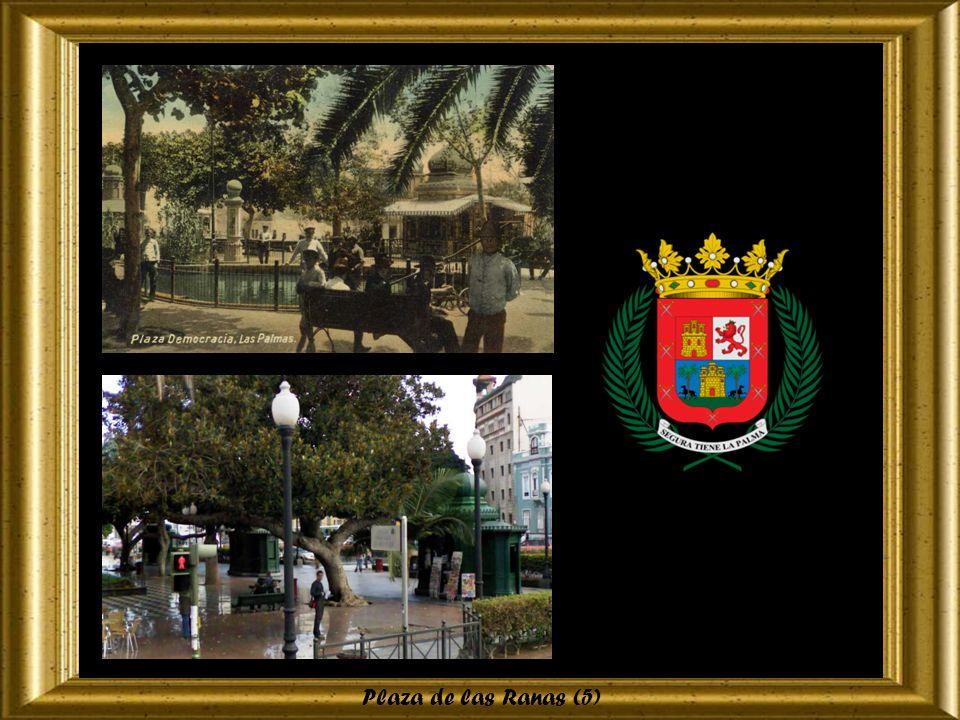 Plaza de las Ranas (4)
