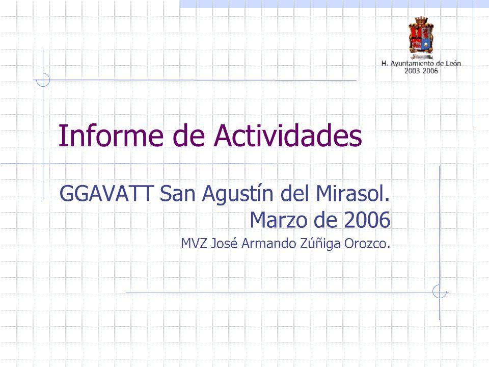 Informe de Actividades GGAVATT San Agustín del Mirasol. Marzo de 2006 MVZ José Armando Zúñiga Orozco.