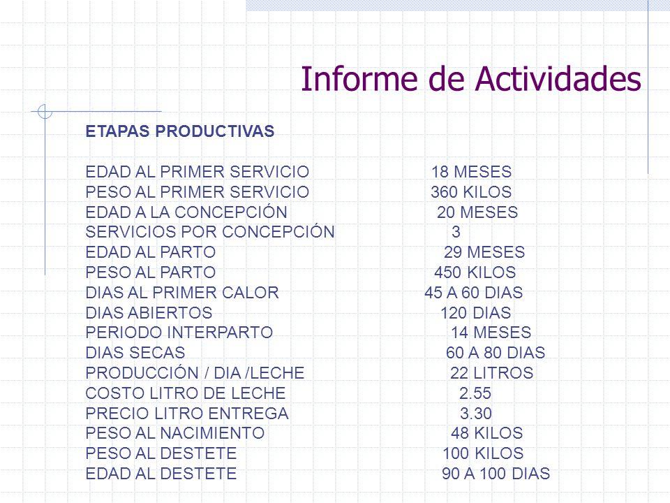Informe de Actividades ETAPAS PRODUCTIVAS EDAD AL PRIMER SERVICIO 18 MESES PESO AL PRIMER SERVICIO 360 KILOS EDAD A LA CONCEPCIÓN 20 MESES SERVICIOS P