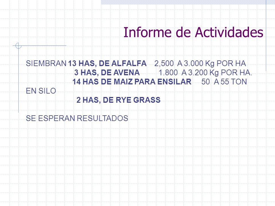 Informe de Actividades SIEMBRAN 13 HAS, DE ALFALFA 2,500 A 3.000 Kg POR HA 3 HAS, DE AVENA 1.800 A 3.200 Kg POR HA. 14 HAS DE MAIZ PARA ENSILAR 50 A 5