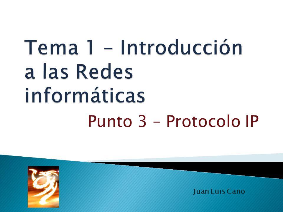 Punto 3 – Protocolo IP Juan Luis Cano