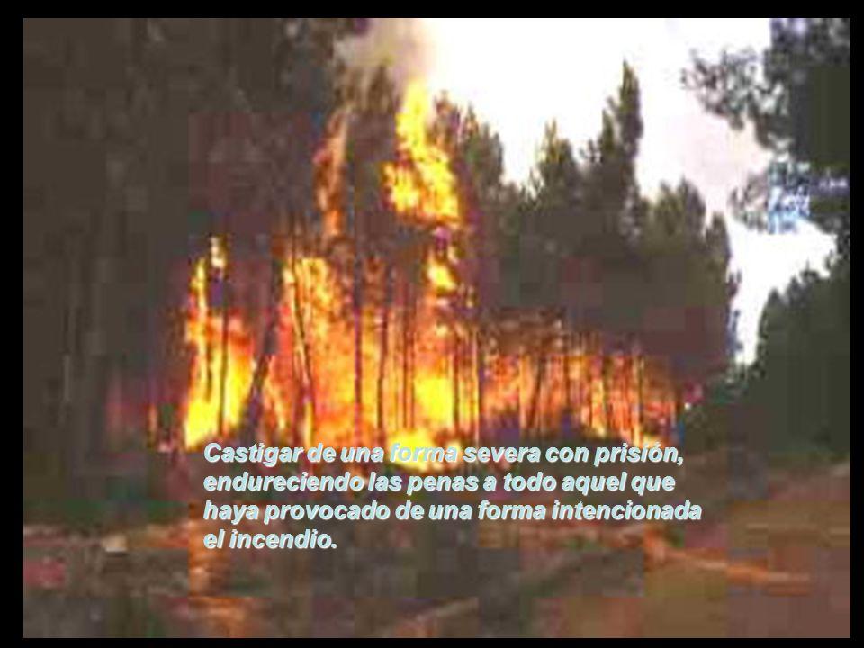Así mismo controlar de una forma muy especial los intereses urbanísticos y madereros, que en la mayoría de los casos los incendios responden al puro negocio.