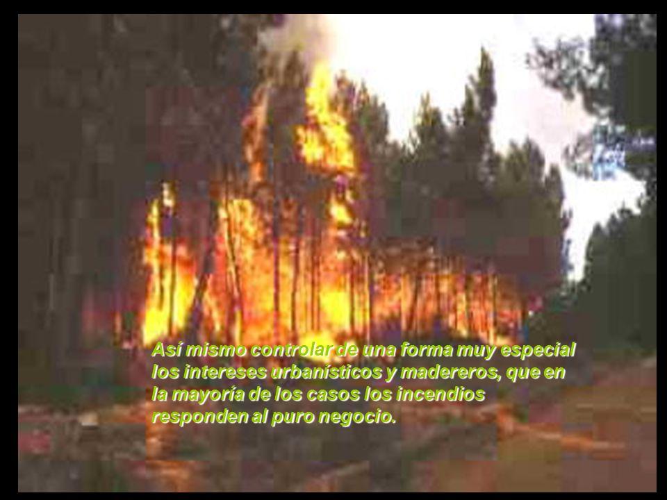 Las Administraciones deben de invertir más en la prevención y el cuidado de nuestros montes evitando estos incendios, siendo una de las preocupaciones máximas para la mayoría de los ciudadanos.