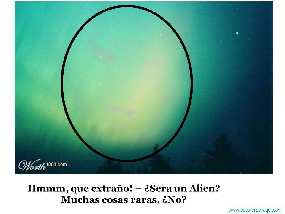 www.paestarporaqui.com Hmmm, que extraño! – ¿Sera un Alien? Muchas cosas raras, ¿No?