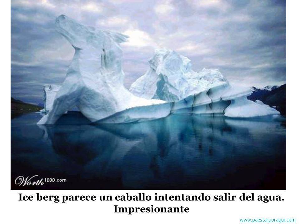 www.paestarporaqui.com Ice berg parece un caballo intentando salir del agua. Impresionante