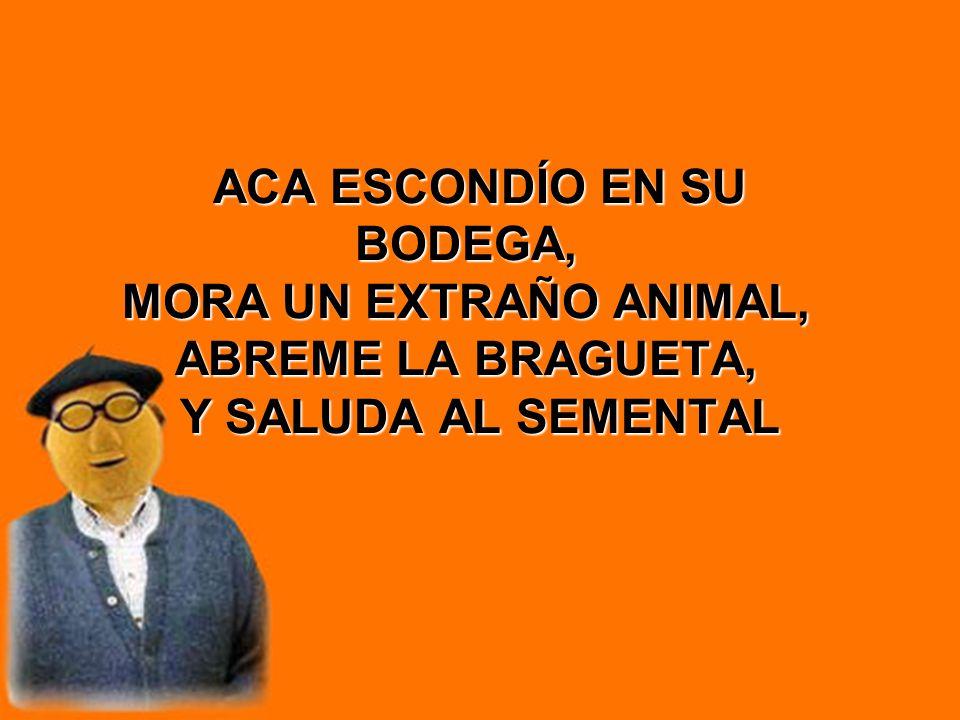 ACA ESCONDÍO EN SU BODEGA, MORA UN EXTRAÑO ANIMAL, ABREME LA BRAGUETA, Y SALUDA AL SEMENTAL