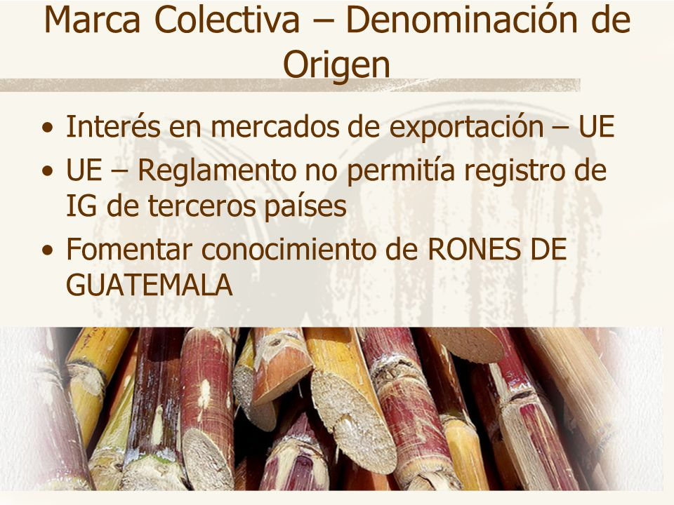 Marca Colectiva – Denominación de Origen Interés en mercados de exportación – UE UE – Reglamento no permitía registro de IG de terceros países Fomenta