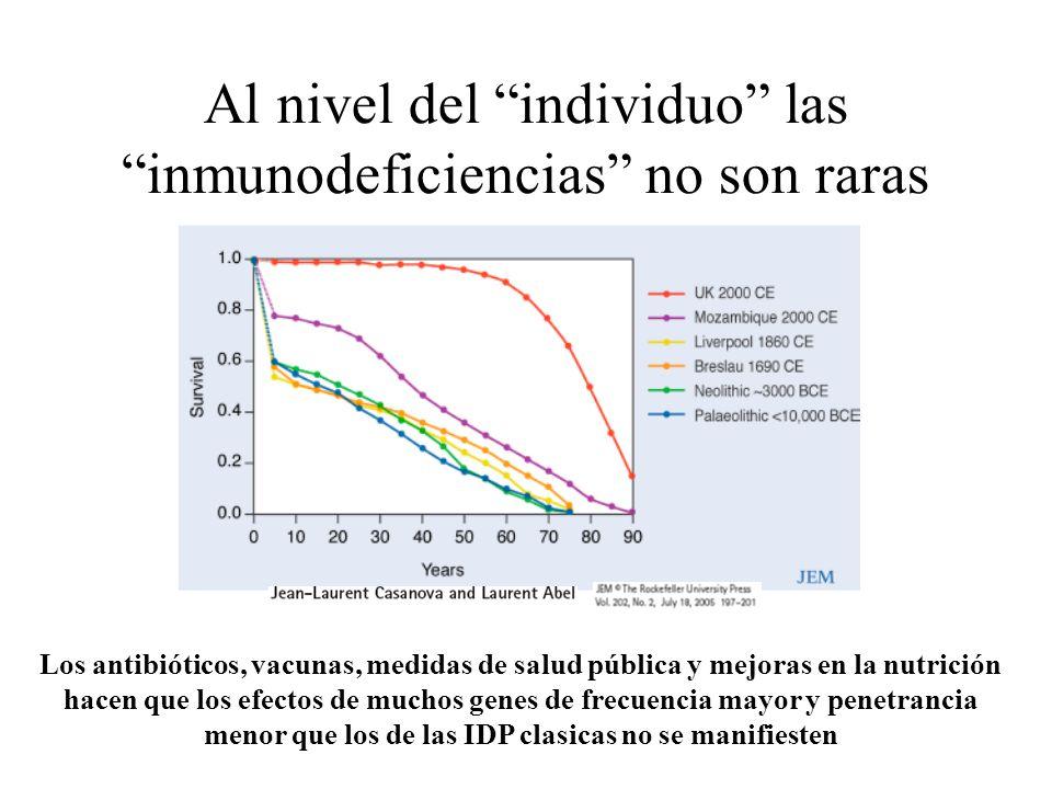 Al nivel del individuo las inmunodeficiencias no son raras Los antibióticos, vacunas, medidas de salud pública y mejoras en la nutrición hacen que los