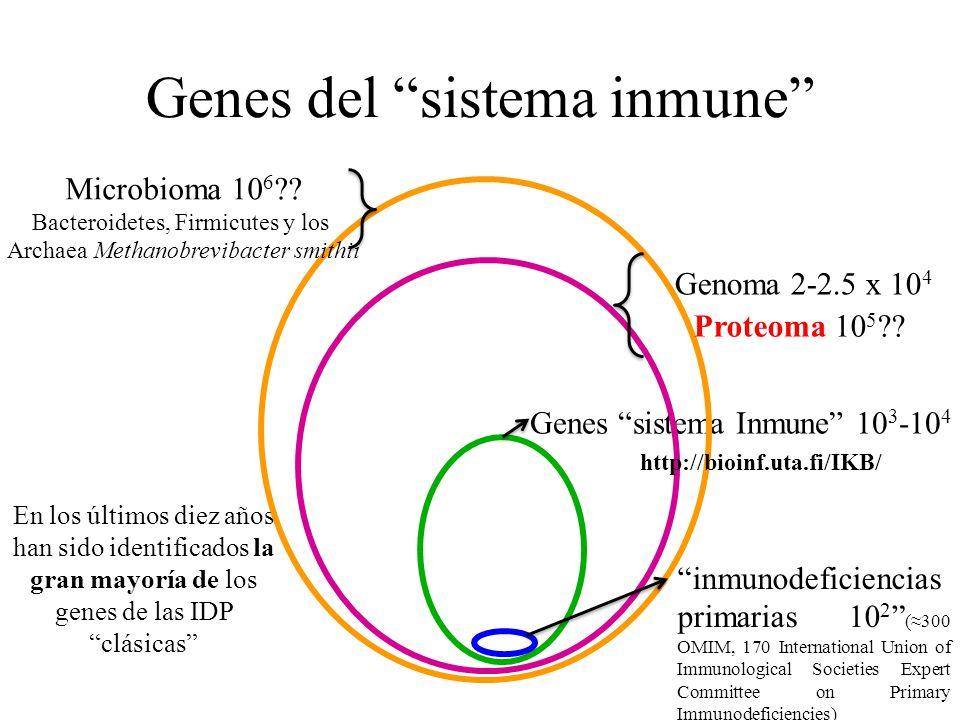 Genes del sistema inmune Genoma 2-2.5 x 10 4 Genes sistema Inmune 10 3 -10 4 inmunodeficiencias primarias 10 2 (300 OMIM, 170 International Union of I
