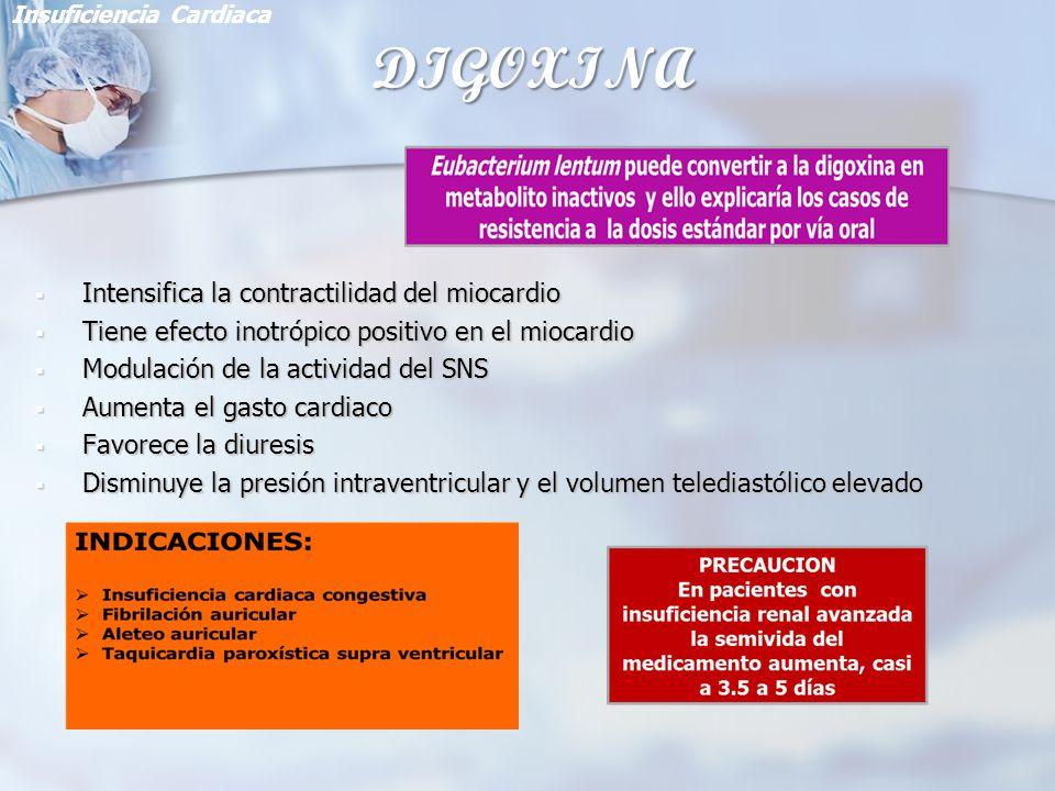 DIGOXINA Intensifica la contractilidad del miocardio Intensifica la contractilidad del miocardio Tiene efecto inotrópico positivo en el miocardio Tien