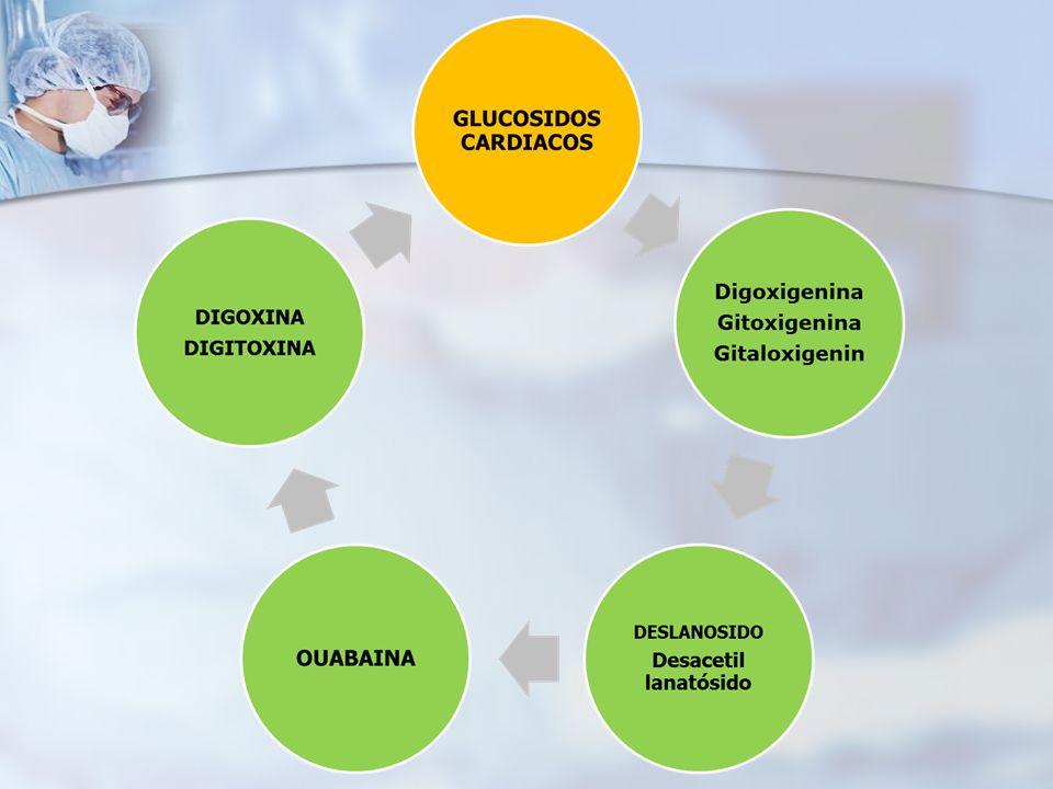 OUABAINA Glucósido cristalino obtenido a partir de las semillas de Strophantus gratus y la madera de Acocanthera oubaio Depuración renal Depuración renal Uso en urgencias hospitalarias Uso en urgencias hospitalarias ICC ICC Reducción del pulso en la fibrilación auricular no controlada Reducción del pulso en la fibrilación auricular no controlada No se absorbe por vía oral No se absorbe por vía oral IV: 0.25-0.5 mg IV: 0.25-0.5 mg Dosis total no exceder de 1 mg en 24 horas Dosis total no exceder de 1 mg en 24 horas Para evitar la sobre dosificación asegurarse que el paciente no haya recibido digitálicos durante las 2 semanas previas al tratamiento.