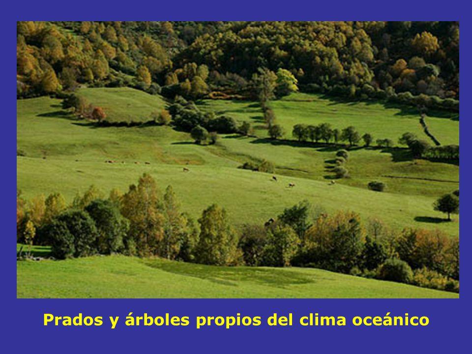 Cataluña Valencia Murcia Andalucía Extremadura Baleares