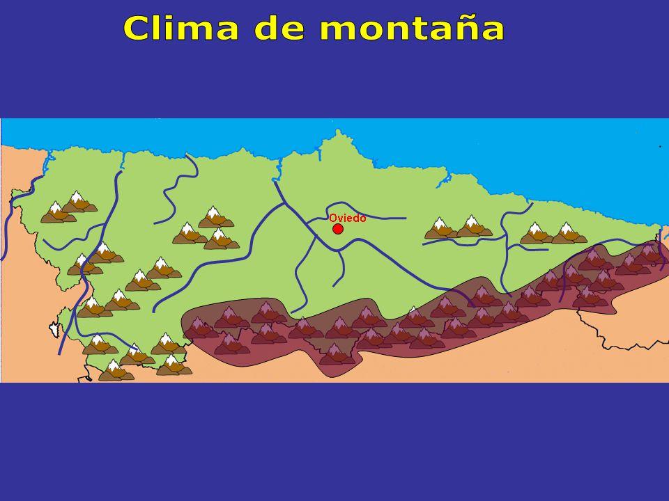 El CLIMA DE MONTAÑA Sur de Asturias Montañas de más de 1500 m de altitud de la Cordillera Cantábrica Características Se extiende por Temperaturas Muy bajas en invierno Suaves en verano, unos 15º C Precipitaciones Abundantes a lo largo de todo el año Superan los 1500 l / m 2