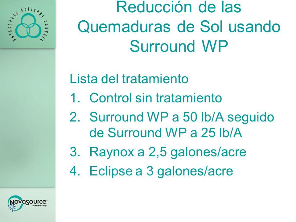 Reducción de las Quemaduras de Sol usando Surround WP Lista del tratamiento 1.Control sin tratamiento 2.Surround WP a 50 lb/A seguido de Surround WP a