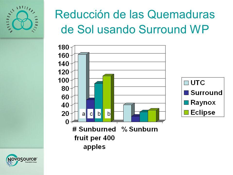 Resultados Los resultados de la evaluación de las quemaduras de sol indicaron que todos los tratamientos resultaron mejores que los del control sin tratamiento.