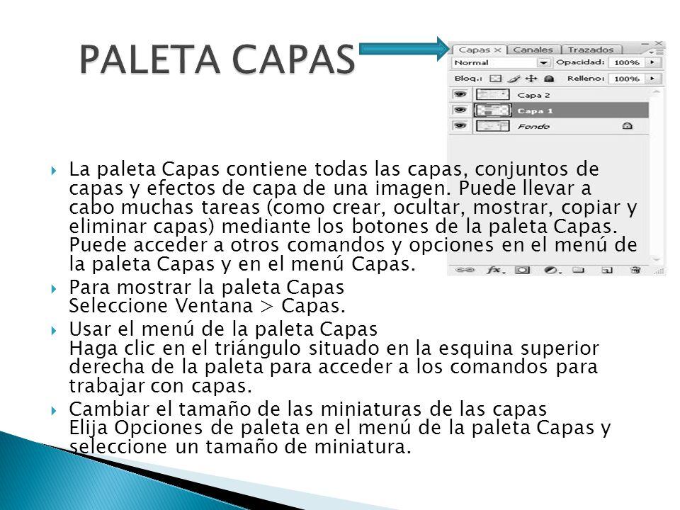 La paleta Capas contiene todas las capas, conjuntos de capas y efectos de capa de una imagen.