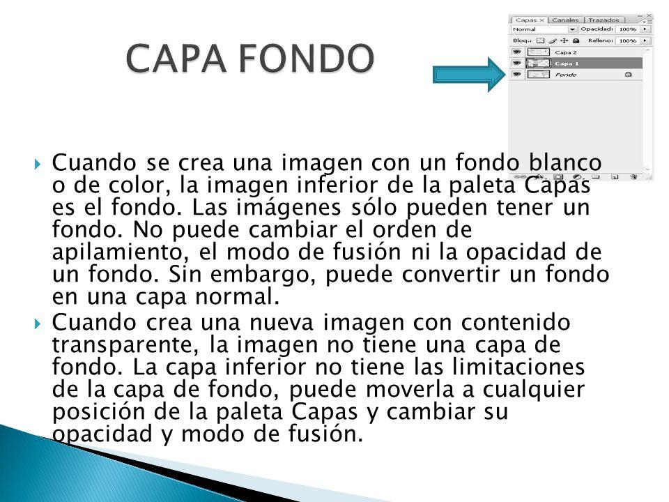 Cuando se crea una imagen con un fondo blanco o de color, la imagen inferior de la paleta Capas es el fondo.