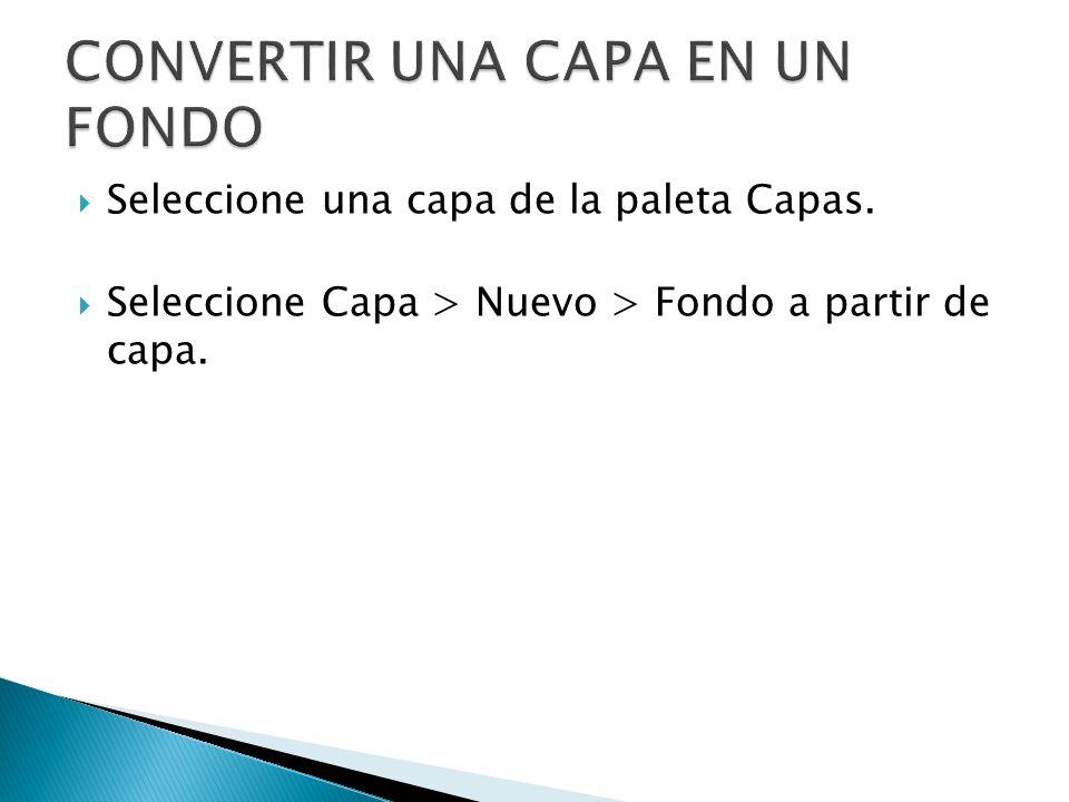 Seleccione una capa de la paleta Capas. Seleccione Capa > Nuevo > Fondo a partir de capa.