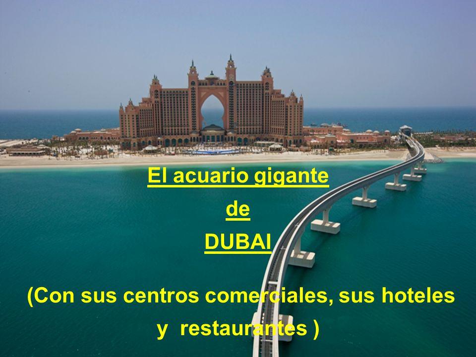 O aquário gigante de DUBAI (Com as galerias de lojas, os hotéis e os restaurantes )