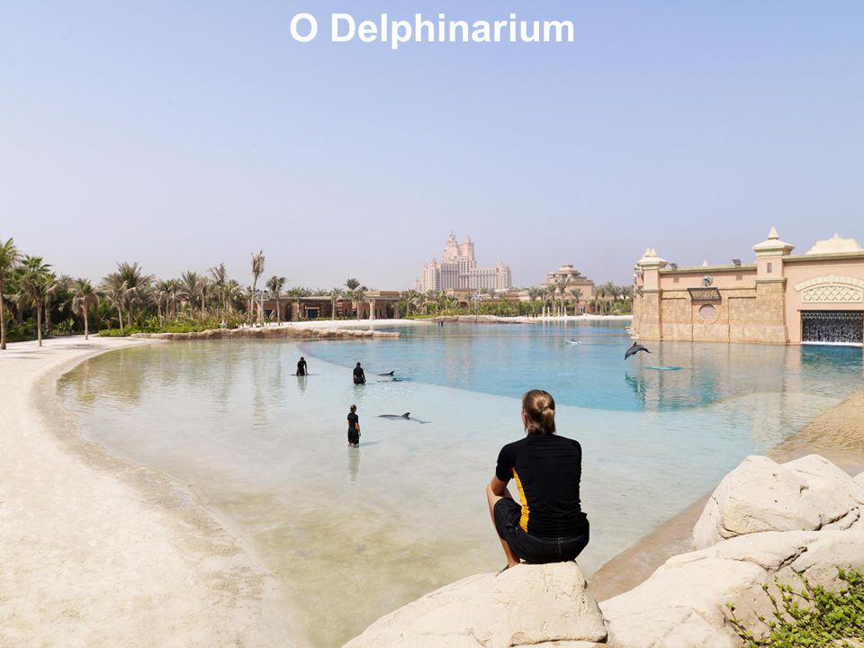 O Delphinarium