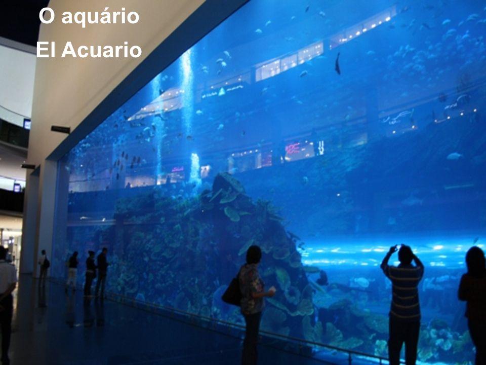 O aquário El Acuario
