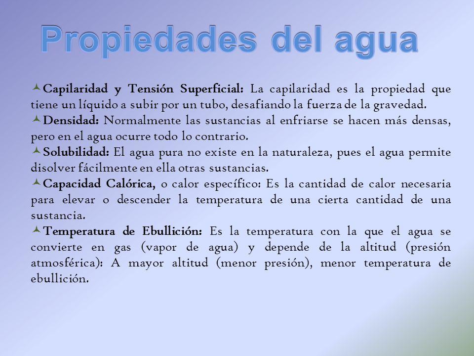 Capilaridad y Tensión Superficial: La capilaridad es la propiedad que tiene un líquido a subir por un tubo, desafiando la fuerza de la gravedad. Densi