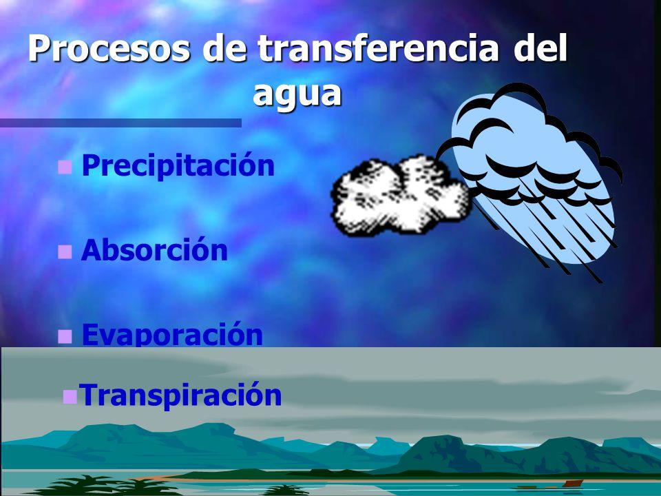 ¿Toda el agua cumple este ciclo.No toda el agua es evaporada y luego precipitada.