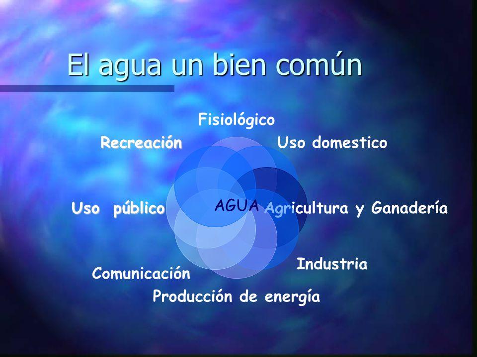 Usos fisiológicos Por sus propiedades físicas y químicas, el agua, desempeña un importante papel en todas las reacciones químicas, de las funciones metabólicas de los seres vivos