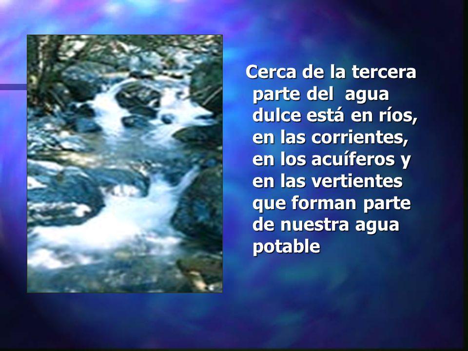 Cerca de la tercera parte del agua dulce está en ríos, en las corrientes, en los acuíferos y en las vertientes que forman parte de nuestra agua potabl