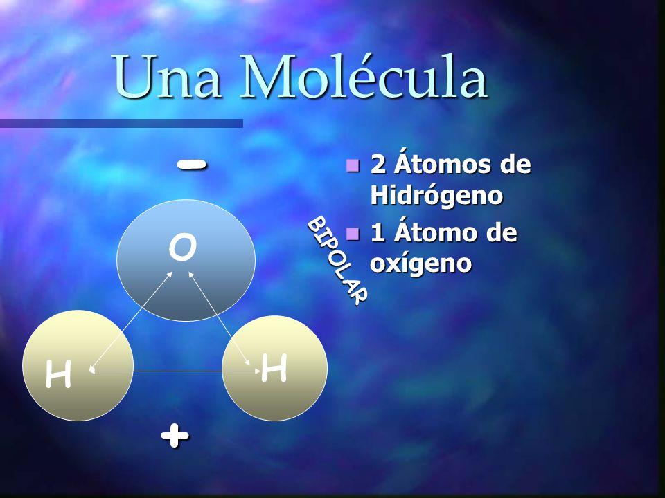 Una Molécula 2 Átomos de Hidrógeno 1 Átomo de oxígeno H H O - + BIPOLAR