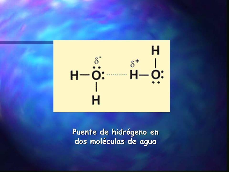 Puente de hidrógeno en dos moléculas de agua