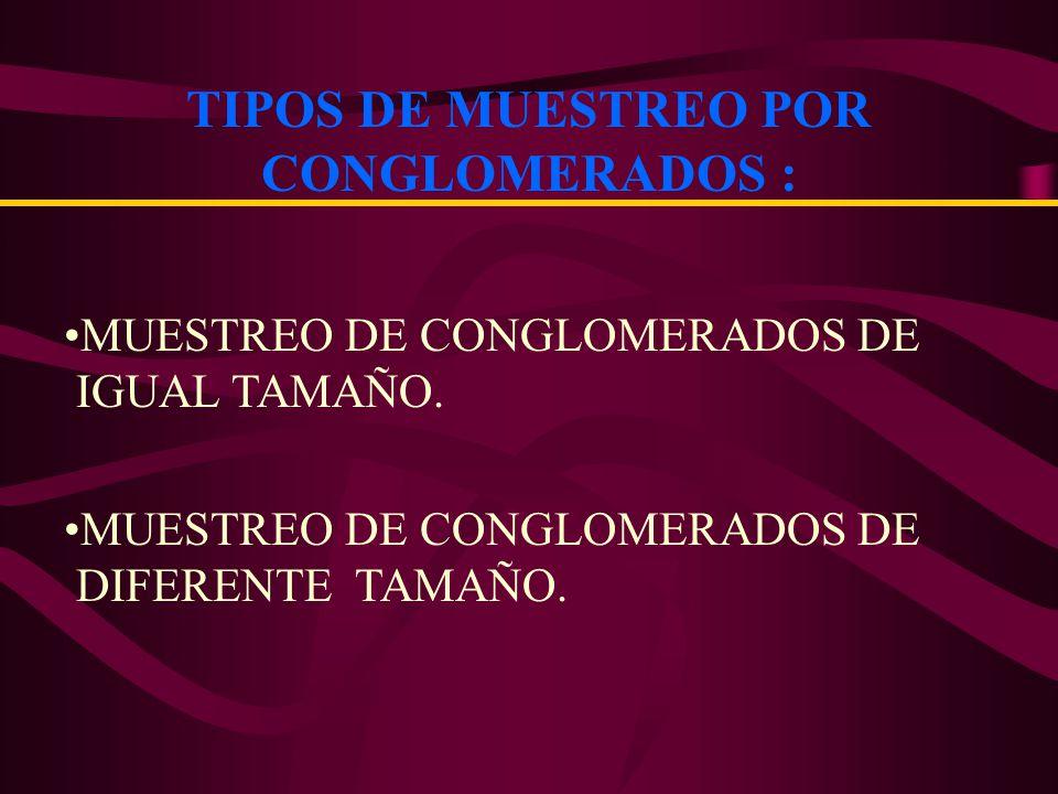 C1C1 C2C2 C3C3 CKCK CNCN : ALTA VARIABILIDAD DENTRO DE CADA CONGLOMERADO HOMOGENIDAD ENTRE CONGLOMERADOS