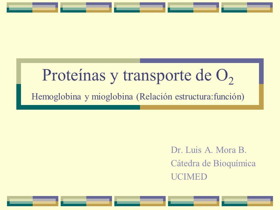 Proteínas y transporte de O 2 Hemoglobina y mioglobina (Relación estructura:función) Dr.