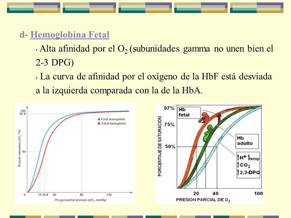 d- Hemoglobina Fetal Alta afinidad por el O 2 (subunidades gamma no unen bien el 2-3 DPG) La curva de afinidad por el oxígeno de la HbF está desviada a la izquierda comparada con la de la HbA.