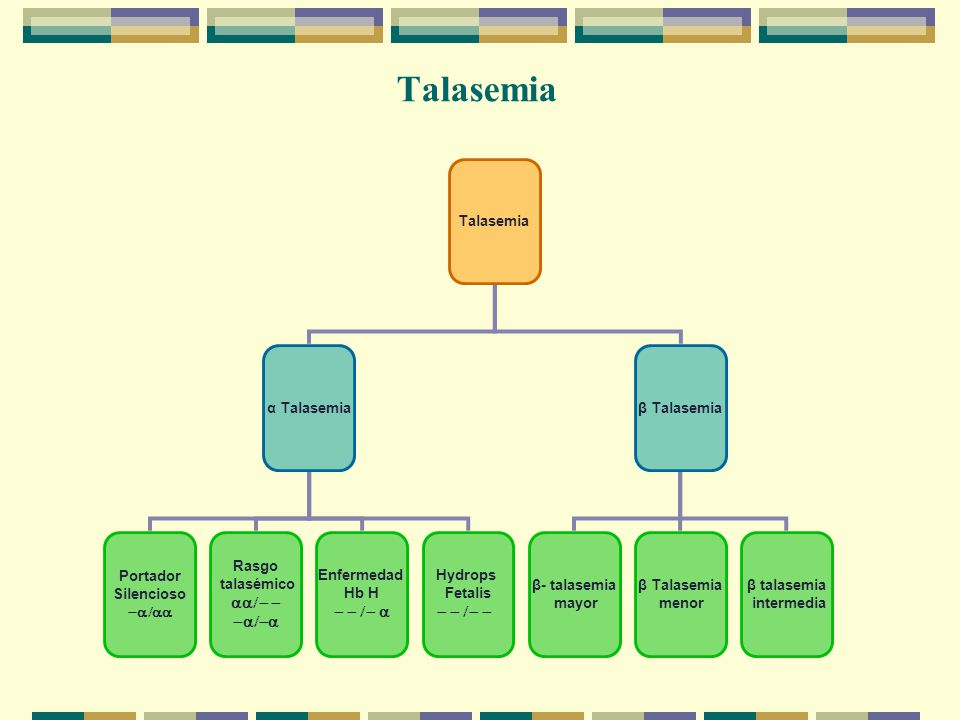 Talasemia α Talasemiaβ Talasemia β- talasemia mayor β Talasemia menor Portador Silencioso Hydrops Fetalis Enfermedad Hb H Rasgo talasémico β talasemia intermedia